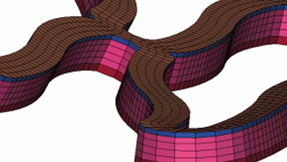 DEP develops unique stent meshing tool